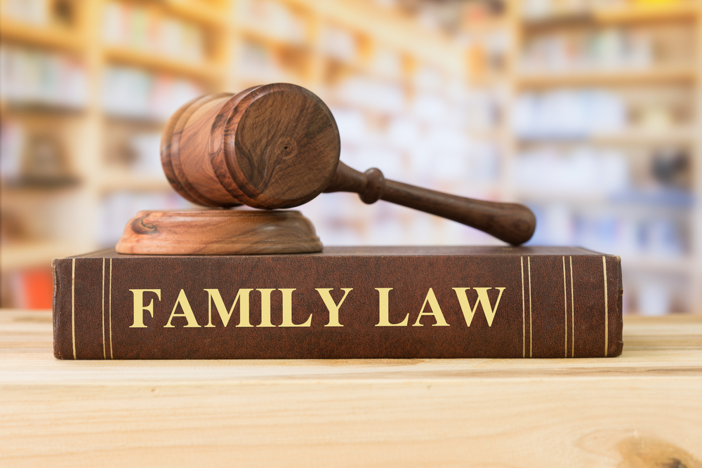 Family Law Cases Explained